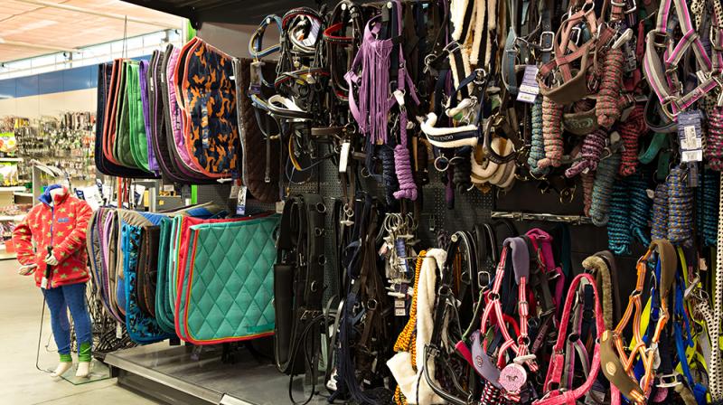 dierenwinkel den haag, Dierenwinkel Den Haag Hofstede Dier & Tuin